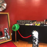the photo booth rental business